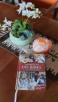 Stilleben: Bibel und Blume