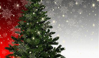 ein blitzender Weihnachtsbaum
