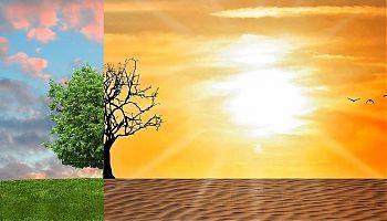 Gegensatz in der Natur durch Klimawandel