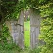 eine Holztür im Garten