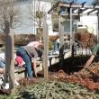 fleißige Helfer bei der Gartenarbeit